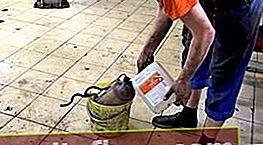 Sredstvo za čišćenje katalizatora