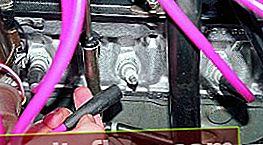 Motor troit VAZ 2106