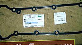 Подмяна на уплътнението на капака на клапана и ремонт на хидравличния обтегач на ангренажната верига Ford Focus 1
